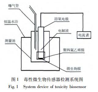 微生物传感器的制备